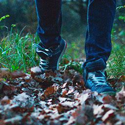 Walking in woodland